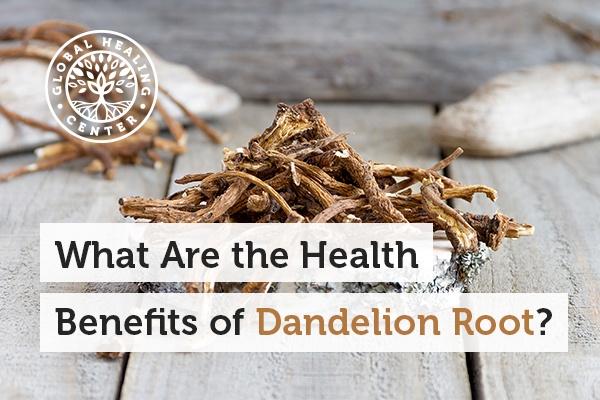 dandelion-root-blog