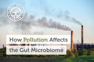 gut-microbiom-blog