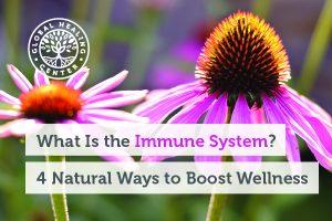 immune-system-blog-300x200-1