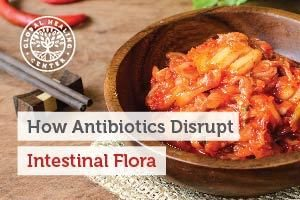 intestinal-flora-blog-300x200