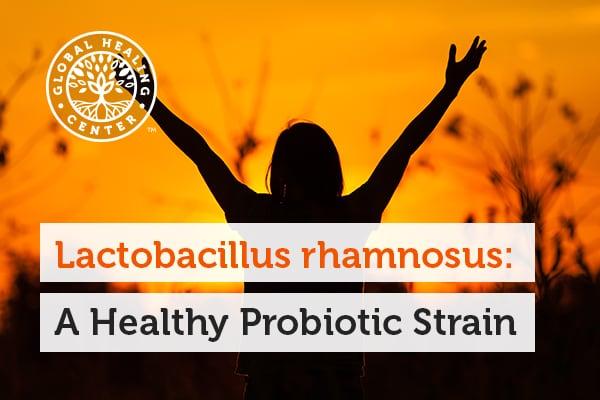 lactobacillus-rhamnosus