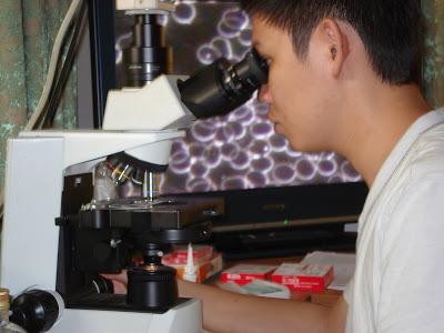 live-blood-darkfield-cell-analysis