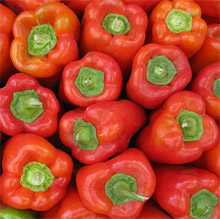 peppers_01