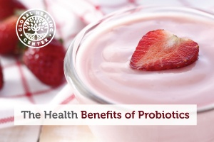 probiotics-blog