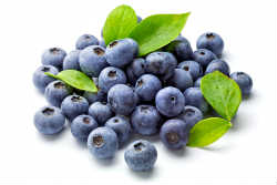 shutterstock_bluberries