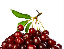 shutterstock_cherries
