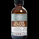 silverfuzion
