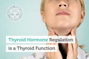 thyroid-hormone-regulation-is-a-thyroid-function-blog-300x200