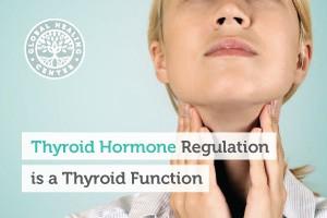 thyroid-hormone-regulation-is-a-thyroid-function-blog-300x200