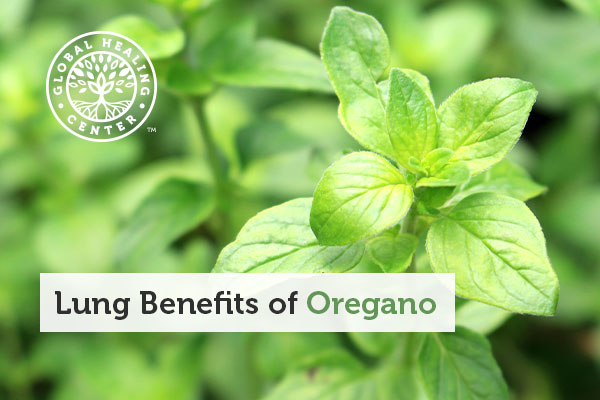 benefits-of-oregano