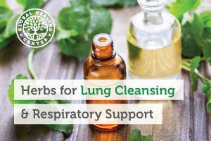 best-herbs-for-lung-cleansing-respiratory-support-300x200