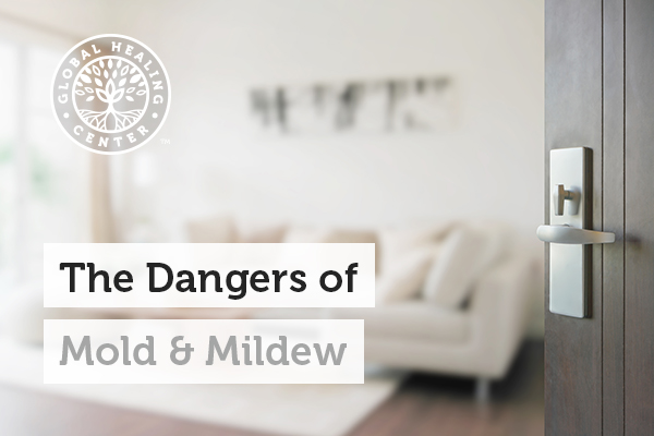 dangers-of-mold