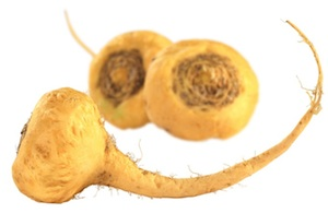 maca-root-small