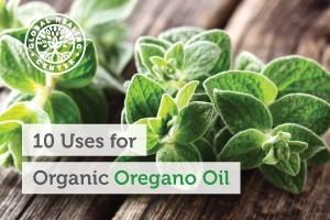 Organic Oregano Oil and Warts – Dr  Eddy Bettermann MD