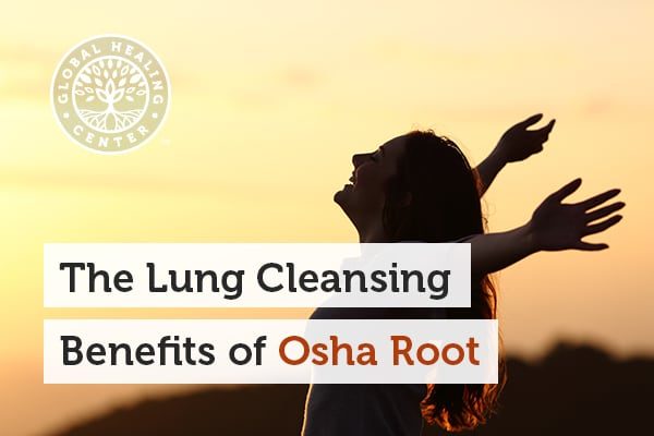 osha-root