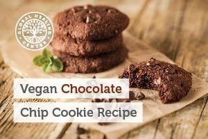 vegan-chocolate-chip-cookie-recipe-blog-300x200