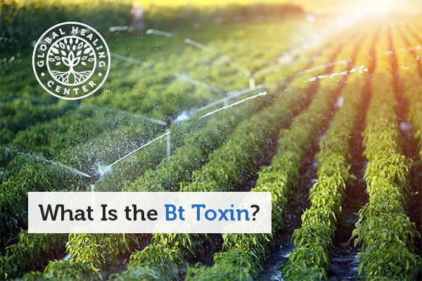 bt-toxin