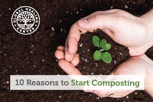 composting-blog-300x200
