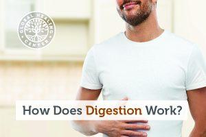 digestion-blog-300x200