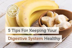 digestive-system-blog-300x200
