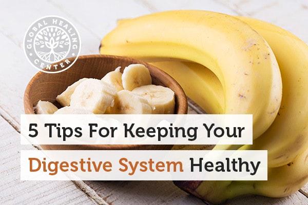 digestive-system-blog