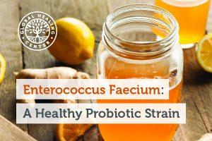 enterococcus-faecium-blog-300x200