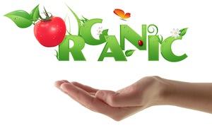 organic-food-small