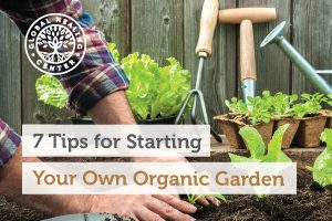 organic-garden-blog-300x200