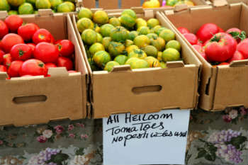 pesticide-free-vegetables