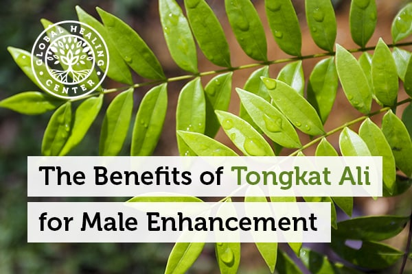 tongkat-ali-male-enhancement.jpg