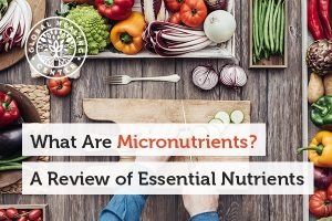what-are-micronutrients-blog-300x200
