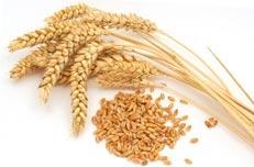 whole_wheat