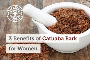 Catuaba-bark-blog-300x200