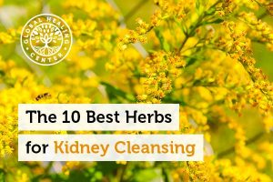 herbs-for-kidney-cleansing-300x200
