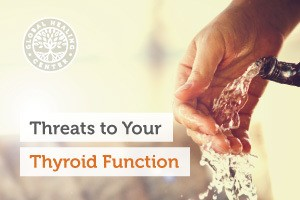 Thyroid-function-blog-300x200