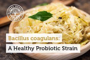 bacillus-coagulans-blog-300x200