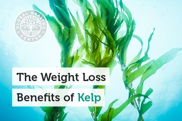 benefits-of-kelp