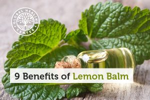 benefits-of-lemon-balm-blog-300x200