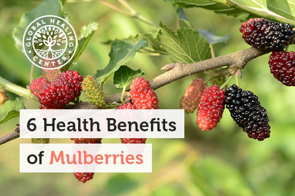 benefits-of-mulberries