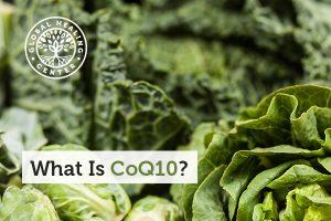 coq10-blog-300x200