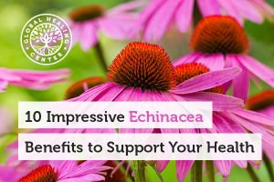 echinacea-benefits-blog-300x200