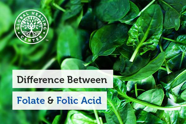 folate-vs-folic-acid