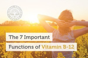 Function-of-vitamin-b12-blog-300x200