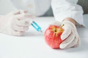 GMO-apple