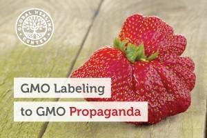 gmo-labeling-to-gmo-propaganda-300x200