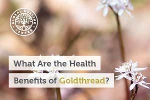 goldthread-blog-300x200
