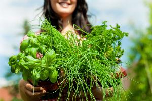 herbs-woman