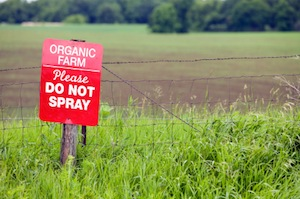 organic-farm-no-pesticides