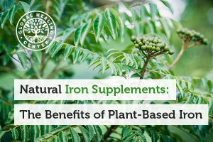 plant-based-iron-supplements-blog-300x200