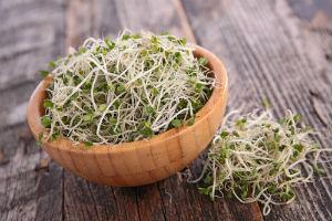 broccoli-sprouts